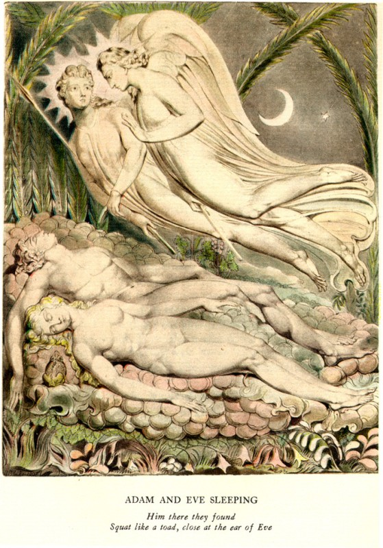 "Adam and Eve's Sex in ""Paradise Lost"" 1"